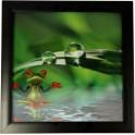 3D Bild mit Rahmen -  Motiv Frosch