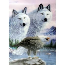 3D Bild ohne Rahmen -  Motiv Wolfsrudel