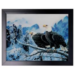 3D Bild mit Rahmen - Motiv Adler